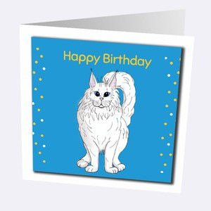 Maine Coon Cards