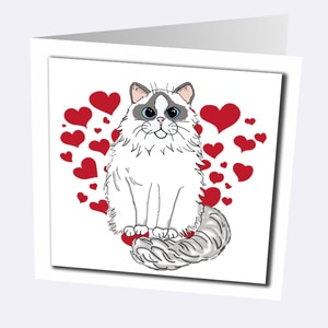 Ragdoll Cat Cards