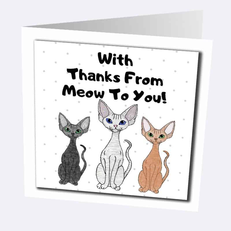 Devon Rex cat greetings cards